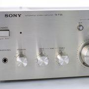 Sonyta-f3a2-1.jpg